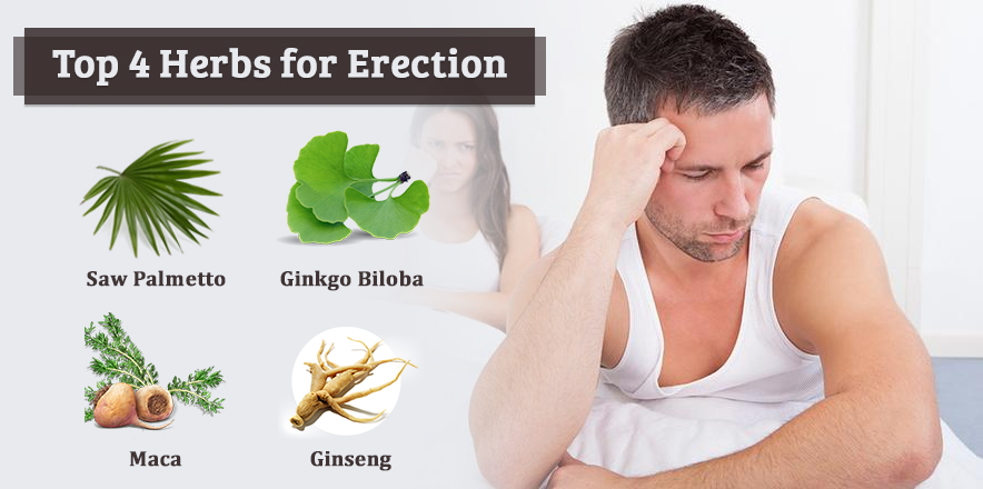 Top 4 Herbs for erection